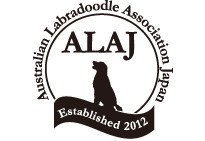 Australian Labradooble Association Japan ALAJ Established 2012